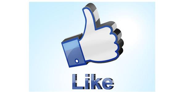 Sujets le splus abordés sur Facebook en 2013