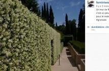 Optimiser sa veille sur Instagram grâce aux flux RSS