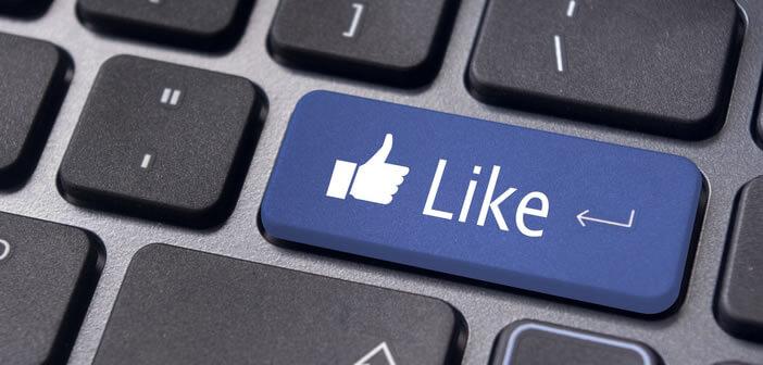 Réseaux sociaux: Facebook et Twitter