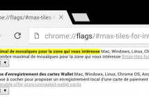 Comment rendre Google Chrome encore plus fluide sous Android