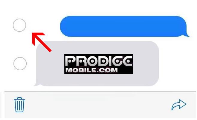 Cochez la case pour effacer un message de l'iPhone