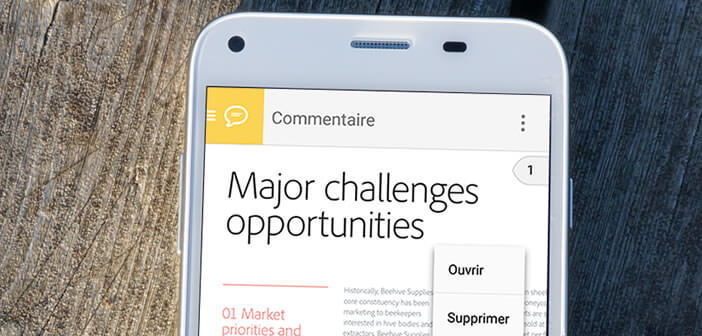 Apprenez à ouvrir et visionner un fichier PDF sur un mobile Android
