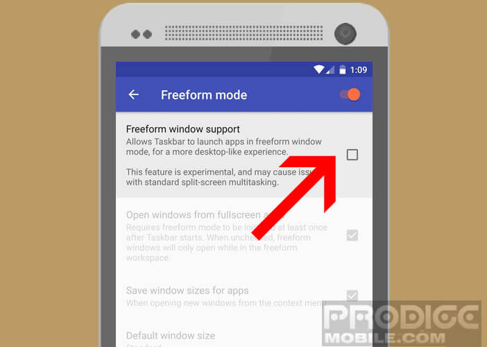 Lancer le mode multifenêtre en activant l'option Freeform Window Support