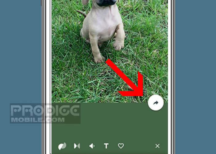 Envoyer le Gif animé créé sur votre iPhone à un ami