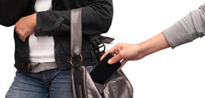 Système de protection antivol Direwolf pour iPhone