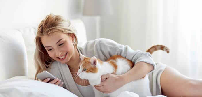 Cette application permet de traduire le miaulement des chats en langage humain
